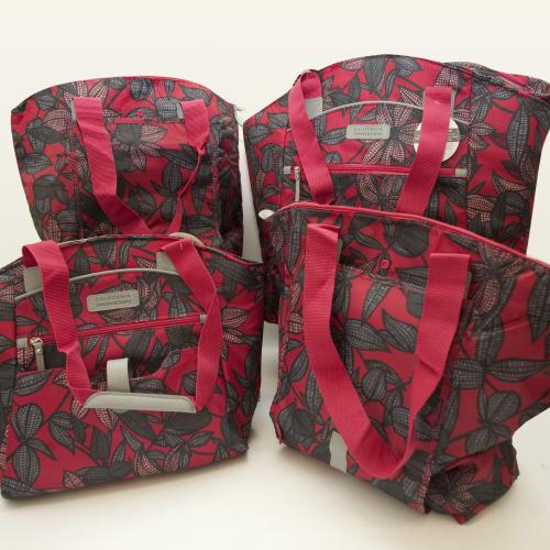 California Innovations 保溫袋和手提袋套裝(4件裝)